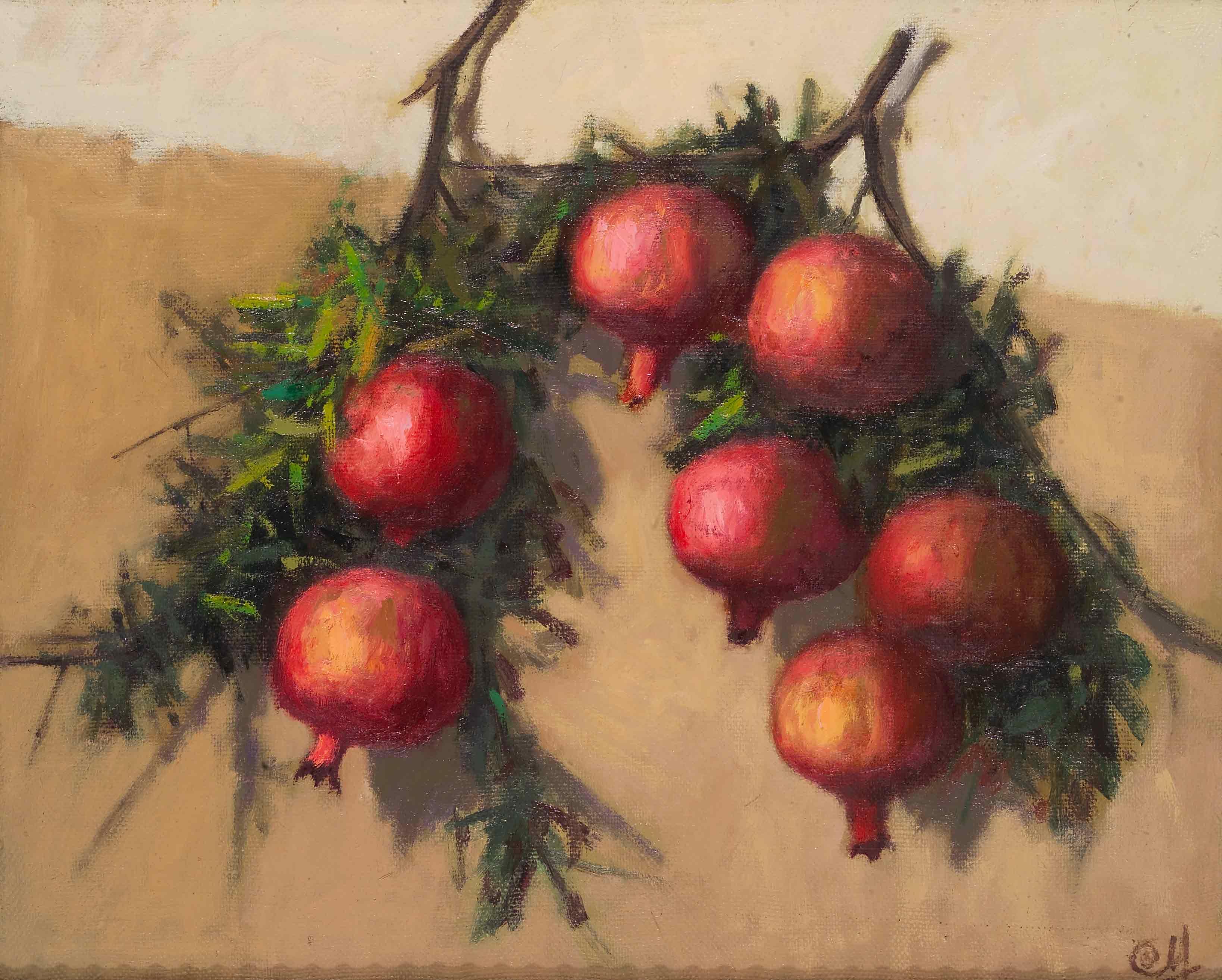 Pomegranate sprig